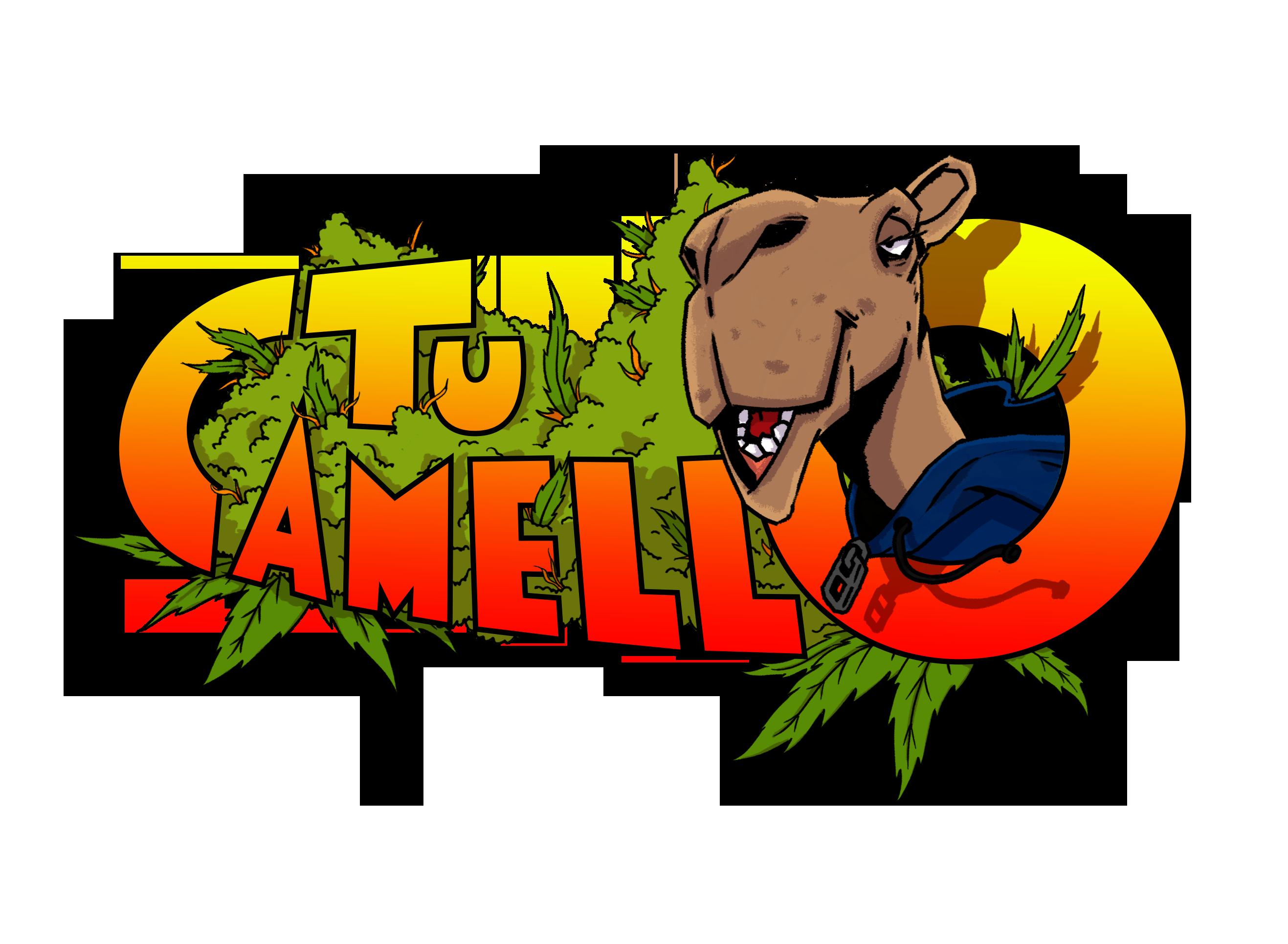 Tu Camello